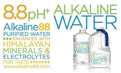 Alkaline88 Water 101 44 Ounce Pack Of 4 Buy Online In