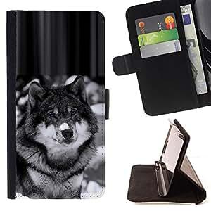 - Beautiful Majestic Wolf Wolfdog Dog - - Prima caja de la PU billetera de cuero con ranuras para tarjetas, efectivo desmontable correa para l Funny HouseFOR Samsung Galaxy S5 Mini, SM-G800
