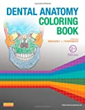 img - for Dental Anatomy Coloring Book, 2e book / textbook / text book