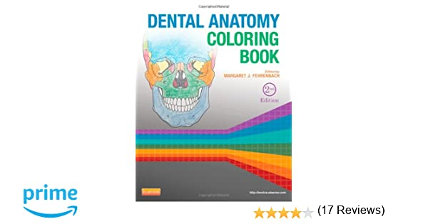anatomy coloring book chapter 5 dental anatomy coloring book 2e 9781455745890 medicine - Dental Anatomy Coloring Book