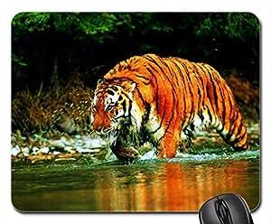 Bathing Tiger Cute Cool Decorative Design Animal Cat Mousepad Rainbow Designs