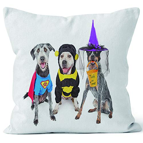 Nine City Cute Dogs Wearing Halloween Costumes Throw Pillow Cushion Cover,HD Printing Decorative Square Accent Pillow Case,24