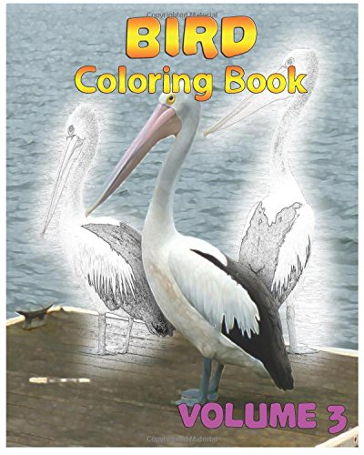 Bird Coloring Books Vol. 3 for Relaxation Meditation Blessing: Sketches Coloring Book (Volume 3) pdf