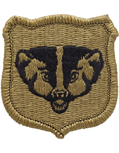 Amazon.com: Wisconsin Army National Guard OCP Multicam Patch: Clothing