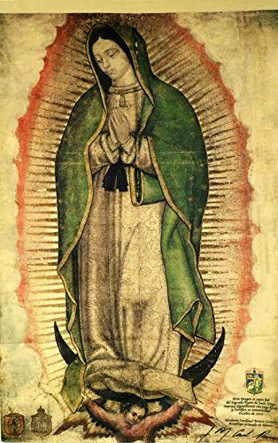 Family Size Our Lady Of Guadalupe Banner (Faux Cactus)