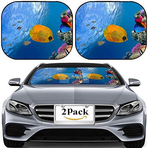 MSD Car Sun Shade for Windshield Universal Fit 2 Pack Sunshade, Block Sun Glare, UV and Heat, Protect Car Interior, Image ID: 10397931 Masked Butterfly Fish Chaetodon semilarvatus Red Sea Egypt ()