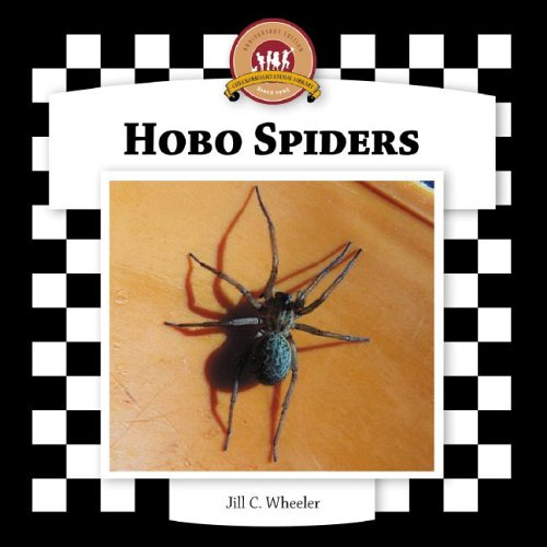 Hobo Spiders (Spiders Set II) by Checkerboard Library