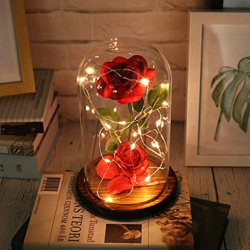 (Micozy Beauty and The Beast Rose,Enchanted Red Silk Rose Lamp That Lasts Forever with LED Fairy String Lights,Fallen Petals and ABS Base in A Glass Dome,Best Gift for Her (Red))