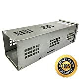 TantIQ Mouse Trap / Rodent Trap for Mouse Control - Live Capture No Kill Humane Mousetrap - Metal House, No More Mices