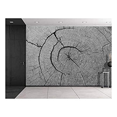 Charming Artistry, Created By a Professional Artist, The Inner Works of a Tree Wall Mural
