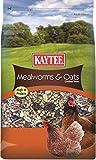 Kaytee Mealworms Treat, 3 lb