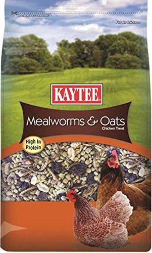 Kaytee Mealworms Oats Treat Pound