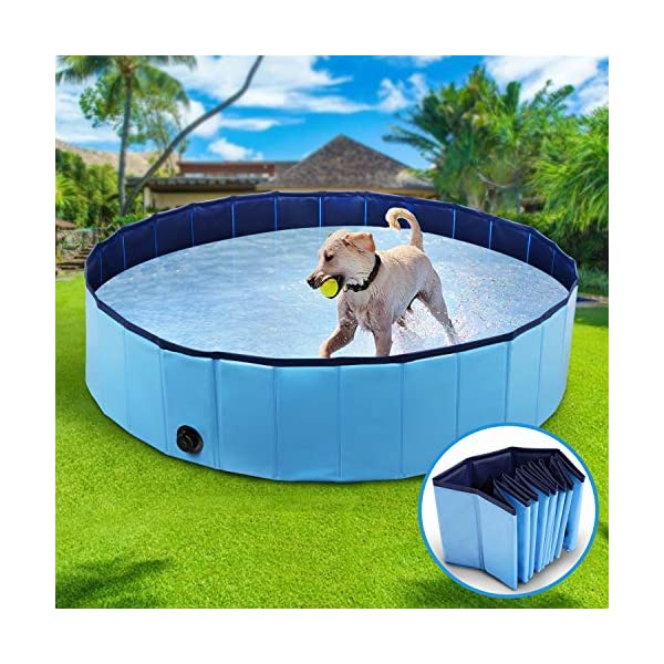 Winipet Foldable Dog Paddling Pool 1