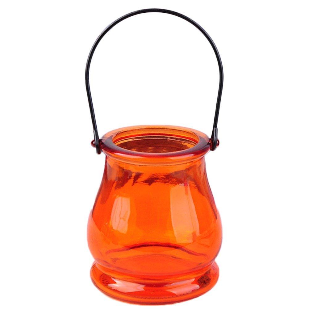 Cupcinu Glas Blumentöpfe Weithals Blumen Vasen zum Aufhängen klein ...