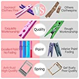 Colored Clothespins Clothes Pins Wooden - Small