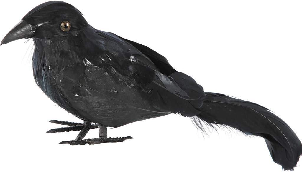Disfraces FCR - Cuervo plumas 22x6x9cm: Amazon.es: Juguetes y juegos