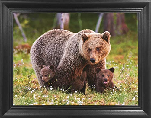 Brown Bear with Cubs Framed 3D Lenticular Picture- Unbelievable Life Like 3D Art Pictures, Lenticular Posters, Cool Art Deco, Unique Wall Art Decor, with Dozens to Choose ()