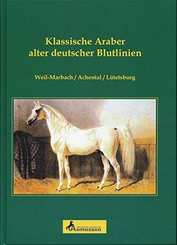 Klassische Araber alter deutscher Blutlinien: Weil-Marbach /Achtental /Lütetsburg
