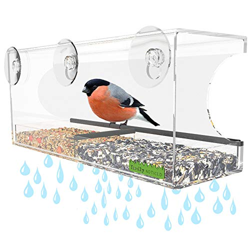 Yardly Noticed Window Bird Feeder with Removable Tray, Drain Holes, Extended Perch, 4 Suction Cups – Crystal Clear See Through Design 2017 – See Wild Birds Up Close, Great for Kids & Cats