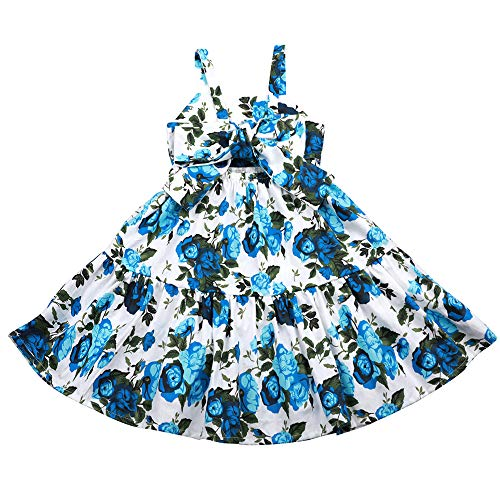 Flofallzique Vintage Floral Blue Girls Dress Baby Backless Easter Sundress Toddler Clothes (6, Floral Blue)