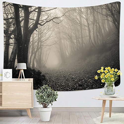 Sgvsdg Tapestry Path On Gothic Forest Monte Catria Home Decoration Wall 60X80 Inches Can Be Hung in The Dormitory Living Room Bedroom]()