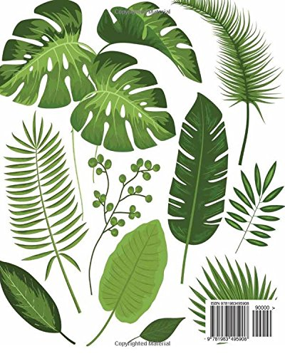 Amazon Com Sketchbook Collection Of Tropical Leaves V3 120 Pages Of 8 X 10 Blank Paper For Drawing Doodling Or Sketching Sketchbooks 9781983495908 T Lookbird Books Watercolor painting for beginners (easy) simply draw tropical leave ,water colour ideas,painting tropical leaves how to paint tropical plants ,without. collection of tropical leaves v3