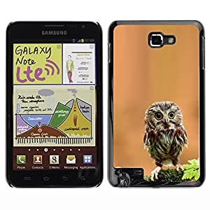 YOYO Slim PC / Aluminium Case Cover Armor Shell Portection //Cute Curious Mini Owl //Samsung Note