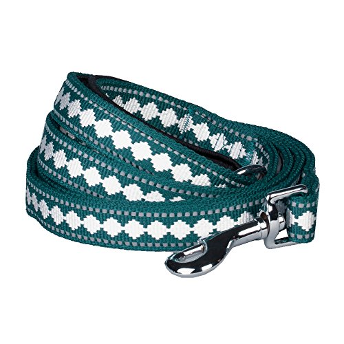 Blueberry Pet Leashes For Dog 5/8 by 5-Feet Long Jacquard Dog Leash in Teal Blue with Neoprene Padded Handle, Small