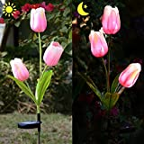 Homeleo Outdoor Solar Tulip LED Flower Light, Solar Garden Stake Flowers, Decorative Solar Patio Lawn Lamp, Path Landscape in-ground Light Up Flowers Lights(Pink)