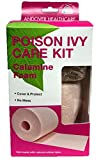 Andover Healthcare Poison Ivy Care Kit (Pack of 3)