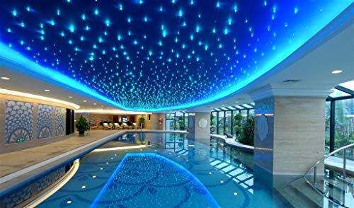 32W Twinkle Remote RGB 4-Speed LED Fiber Optic Star Ceiling Kit Light + Crystal 16.4ft/5m Long 0.03in/0.75mm 1000pcs by Shine (Image #1)