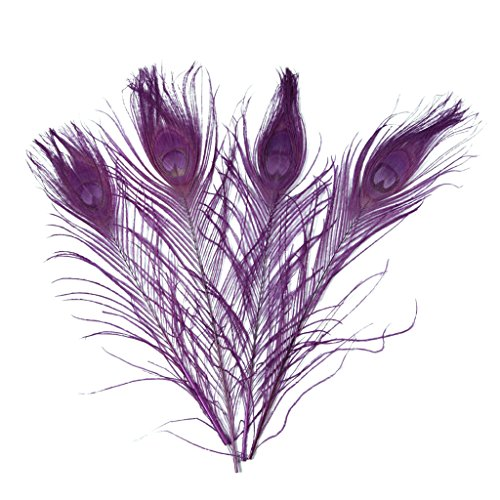 (Feathers,plume,Hgshow 20 Pcs Bleached & Dyeing peacock feather 10-12 inches)