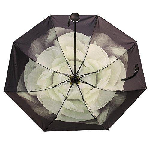 Joseph Abboud Mens Croc (BB Gardenia white Windproof UV Clear/Rain Korean Style Flower Princess Folding)