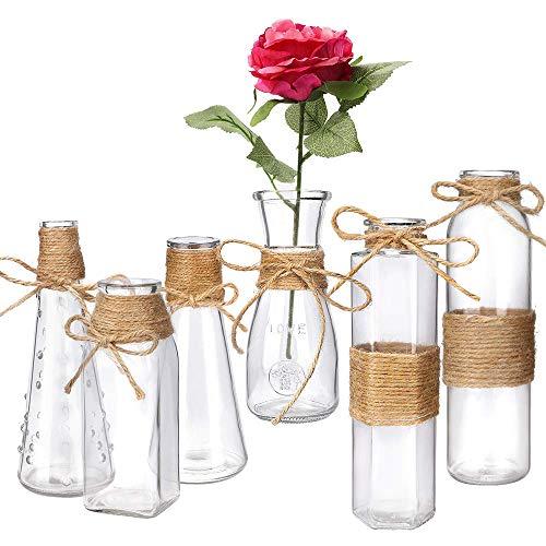 Habbi Glass Vases Set of 6, Clea...