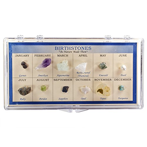 Fantasia Boxed Collection: Natural Birthstone Collection in Presentation Case - Set #5 - As Nature Made Them - Educational Natural Rock, Fossil, Gemstone & Mineral Specimens for The Classroom ()