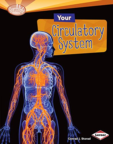 Your Circulatory System (Searchlight Books TM _ How Does Your Body Work?) (The Circulatory Story By Mary K Corcoran)