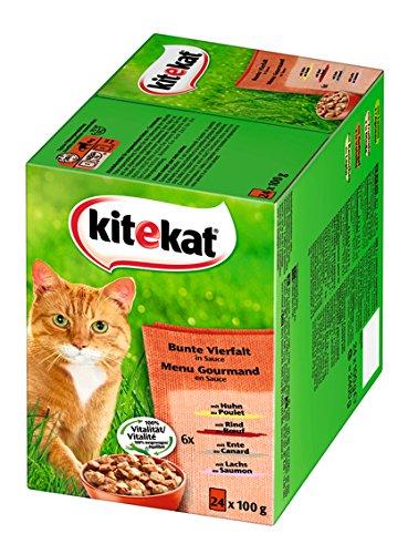 Kitekat Katzenfutter Bunte Vierfalt in Soße, 48 Beutel (2 x 24 x 100 g)