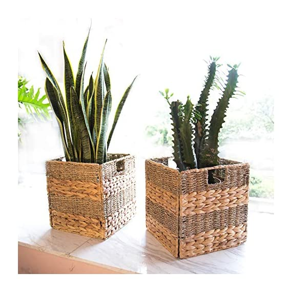 "StorageWorks Wicker Storage Baskets, 10.2""x10.2""x10.6"", 2-Pack - SPACE EFFICIENT: Collapsible design. STURDY: Hand woven over an iron frame. HOME DECOR: Versatile design fits well in your home. - living-room-decor, living-room, baskets-storage - 51HBuNO2%2BJL. SS570  -"