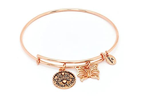 db58b04343e76 Amazon.com: Chrysalis bracelet Special Friend Expandable Bangle: Jewelry