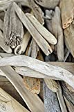 """Richland Lake Superior Driftwood 6""""-12"""" 50 Pieces"""