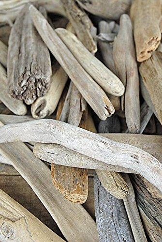 Richland Lake Superior Driftwood 6''-12'' 50 Pieces