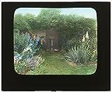 1916 Photo %22Gray Gardens%2C%22 Robert