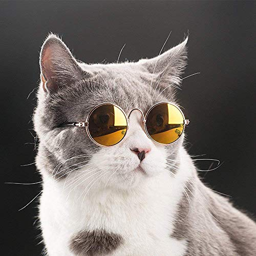 - Pincute Funny Pet Cat Sunglasses Classic Retro Circular Metal Prince Sunglasses Photo Props Toys Cosplay for Cats or Small Dogs Fashion Costume(Random Colors)