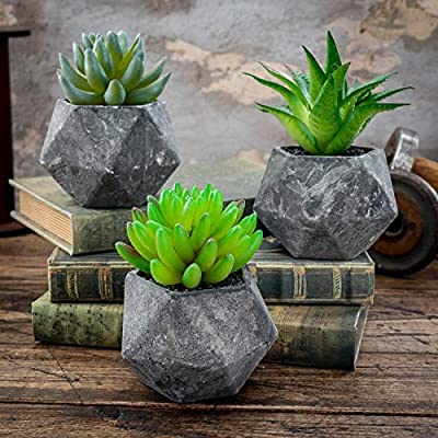 Ashbrook Outdoors Artificial Succulent Plants with Pots (Set of 3) | 3 Faux Plants in Potted Gray Succulent Planters | Modern Home Décor Accents for The Office, Desk, Living Room, and More