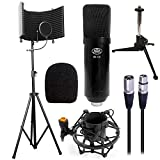 AxcessAbles SF-101Kit Black Recording Studio Isolation Shield Stand, Professional Cardioid Studio Condenser XLR Microphone, Shock Mount and Pop Filter. for Studio Record, Broadcasting