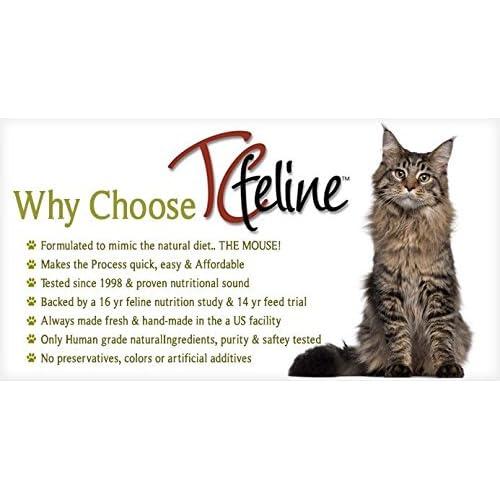 Good tcfeline raw cat food supplement premix for a homemade all good tcfeline raw cat food supplement premix for a homemade all natural grain forumfinder Choice Image