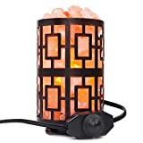 Himalayan Salt Lamp, Hand Carved Natural Crystal Salt Rock Lamps Light with Dimmer Switch Control, ETL Approved, Glow Salt Light for Air Purifying, Ideal Gift and Home Decor