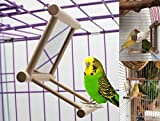 (US) Bird Swing, Parrot Cage Toys,Swing Hanging Play with Mirror for Macaw African Greys Parakeet Cockatoo Cockatiel Conure Lovebirds Canaries By Old Tjikko,1 PC (3.7x3.5 x3.5inch)