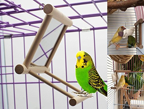 Old Tjikko Bird Swing, Parrot Cage Toys,Swing Hanging Play