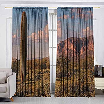 Image of AndyTours Outdoor Patio Curtains,Saguaro,Drapes for Bedroom,W108x108L Inches Brown Blue Green